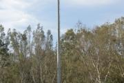 Aménagement du centre sportif SERAIDI Annaba